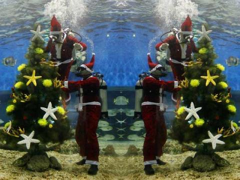 Новогодняя елка на морском дне