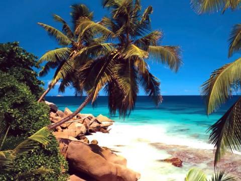 Туры на Сейшельские острова, цены на отдых в раю
