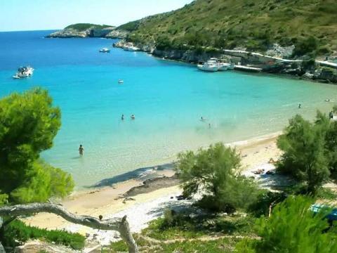 Небольшие бухты с чистейшими пляжами можно найти на многих островах Хорватии