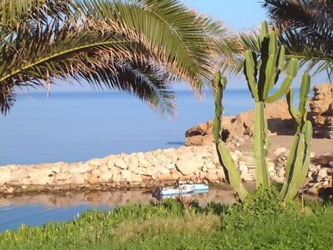 Красивое морское побережье острова подарит вам незабываемый отдых на Кипре