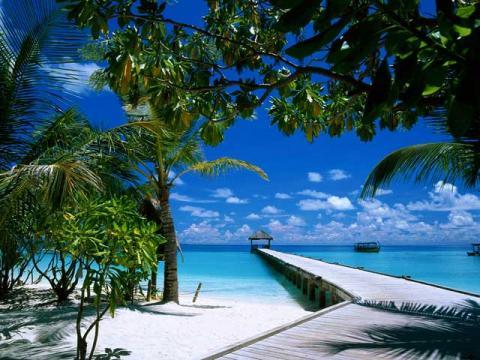 Отдых на индийском океане в районе Мальдив существенно отличается от отдыха на море
