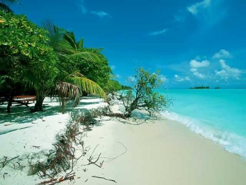 Приятная солнечная погода на Мальдивах практически круглый год.