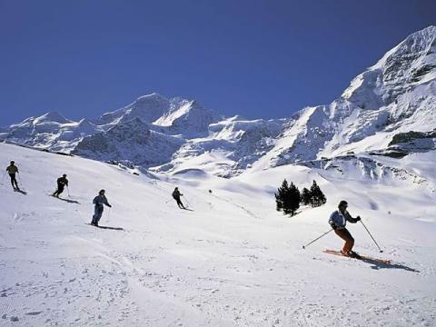 Высококлассные спуски на фоне горных вершин курорта Гриндельвальд